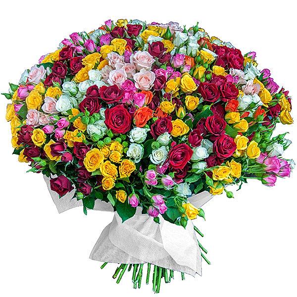 Московская абхазская диаспора поздравляет Инала Габлия с Днем Рождения!
