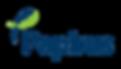 Logo Papirus sem Slogan.png