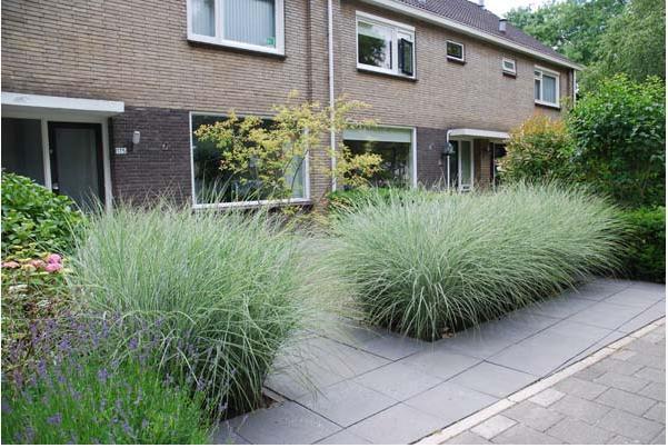 Van deudekom tuinen groen bezig in aklmaar en omstreken for Voortuin strak modern