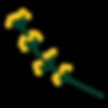 Blume gelb 2.png