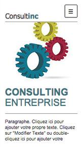 Consultant en Entreprise