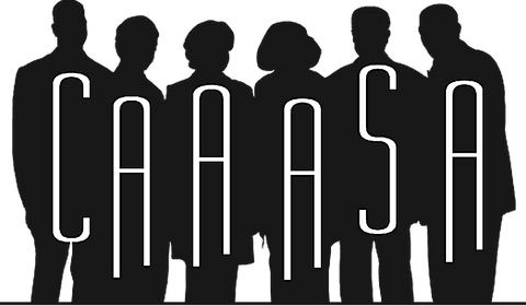 CAAASA Professional Development Summit