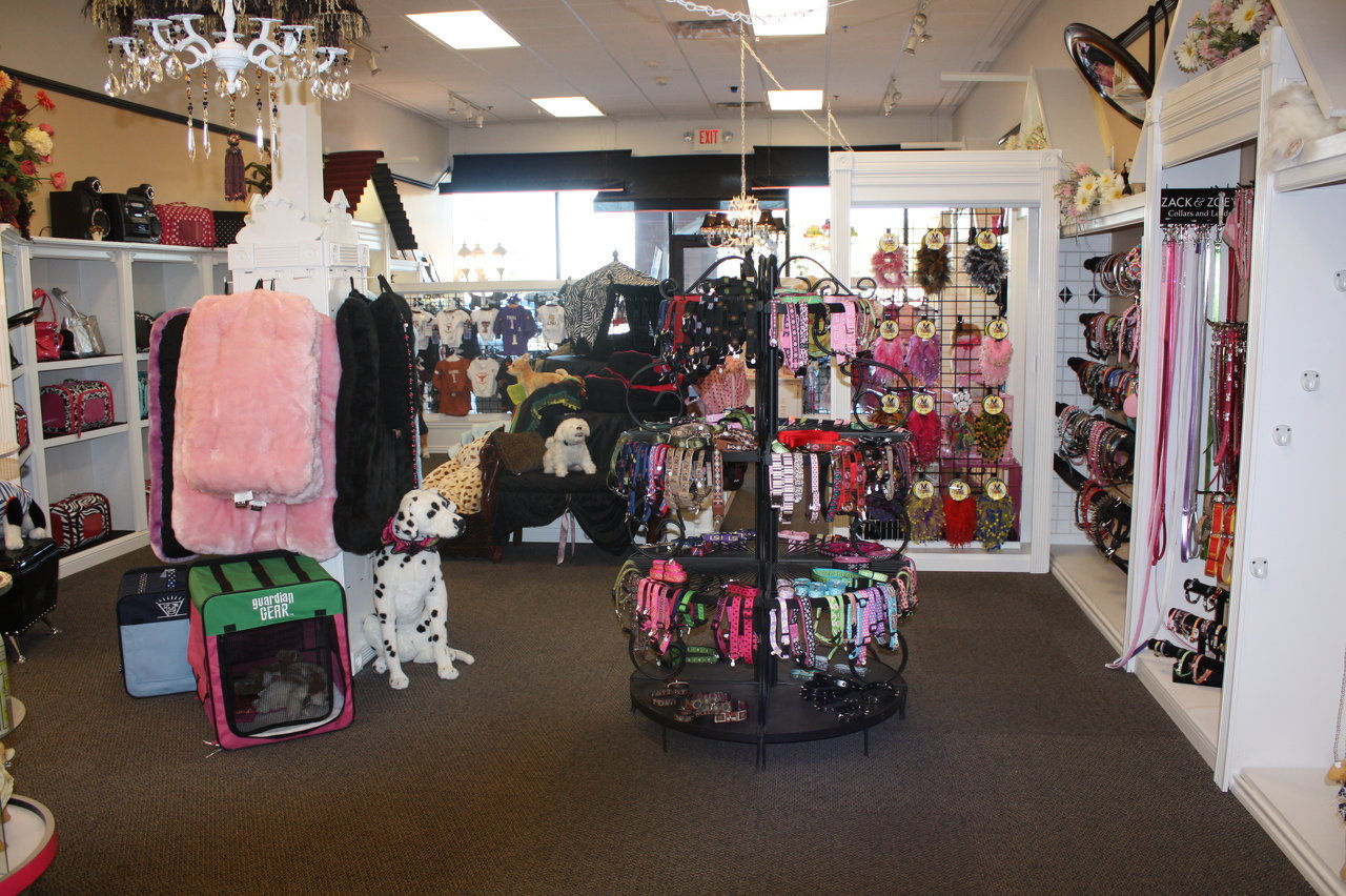 Heavenly Puppies is a Unique Puppy Boutique