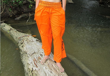 monicabeachpants2.jpg