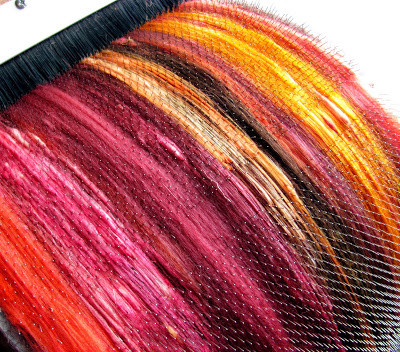 Dyed wool on a carding machine
