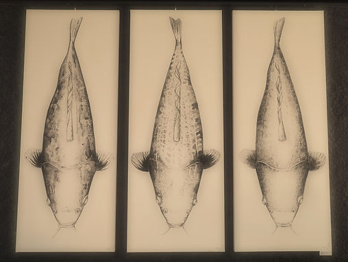 Koi-Triptychon