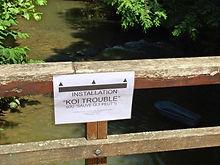 Vers Koi Trouble