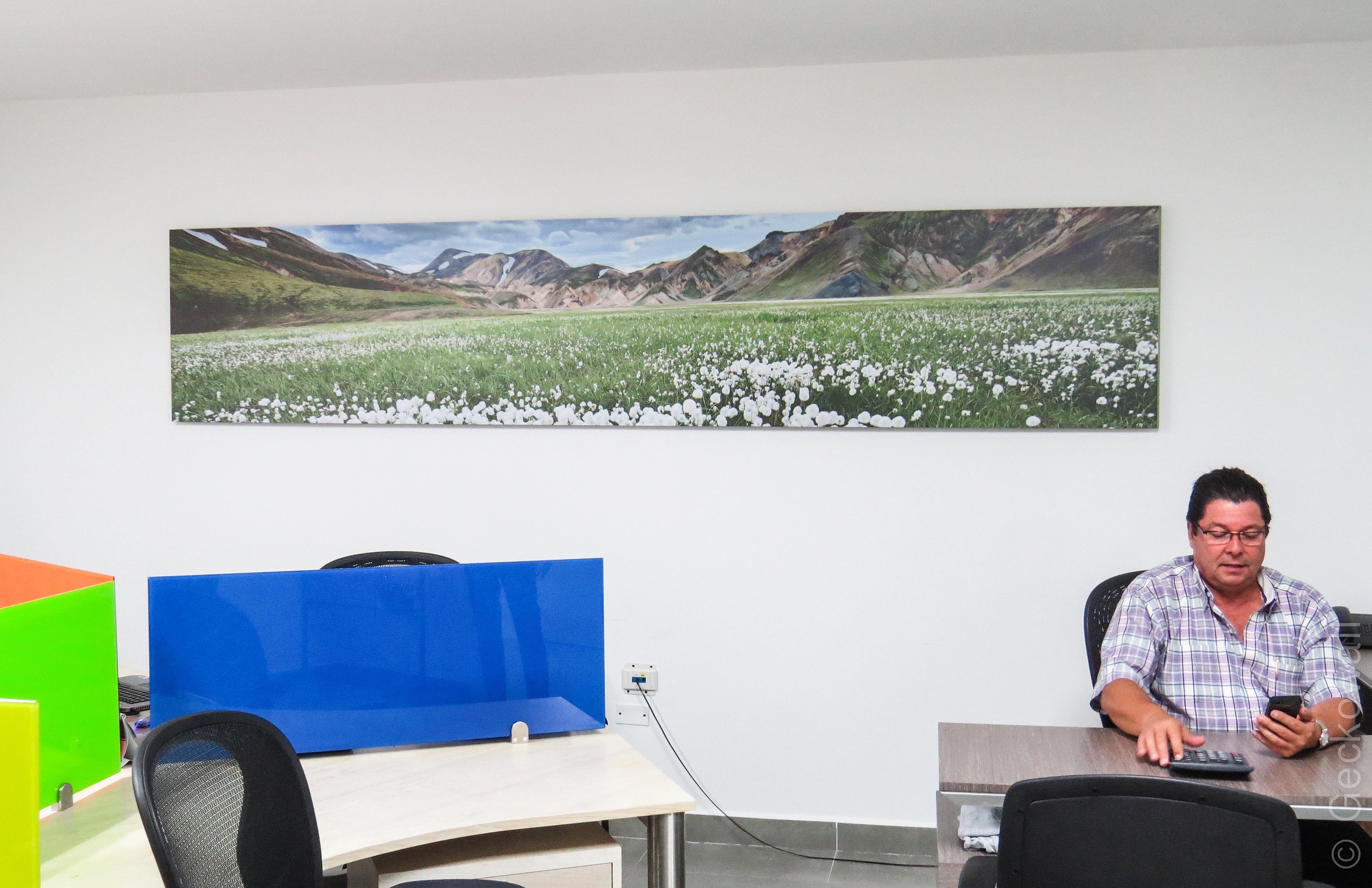 Vinilos decorativos cuadros y murales geckowall - Cuadros gran formato ...