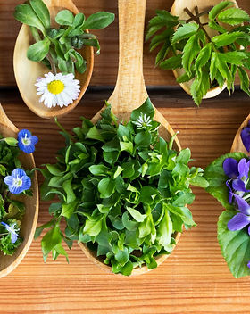 edible-flowers-onlineshop-capegarden.jpg