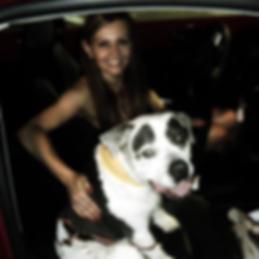 Pittie's Angels, Remember Petey? Pitbulls are love, Animal advocate.