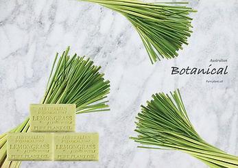 lemongrasssoap.jpg