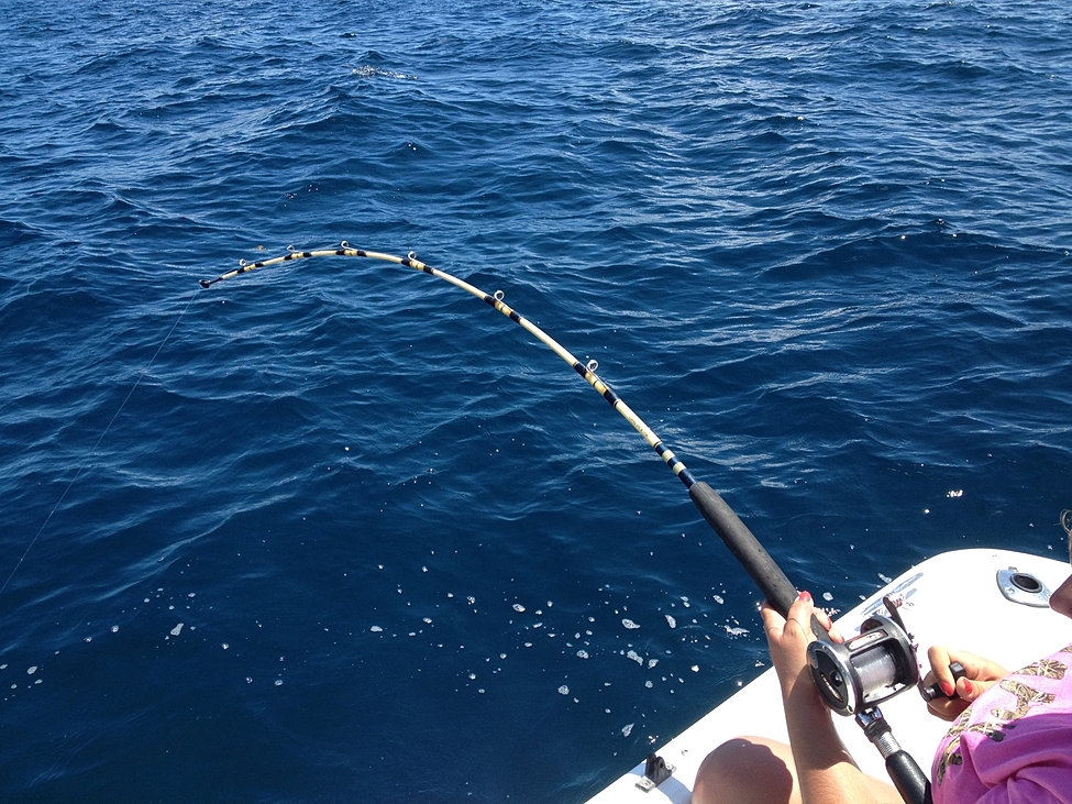 Panama city beach charter fishing panama city beach deep for Charter fishing panama city beach