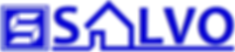 image icon salvo S house logo 2018APR blue web2.png