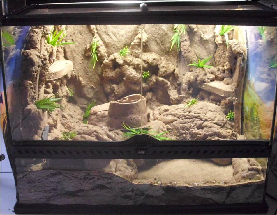 Decoration terrarium desertique - Decor fond terrarium desertique ...