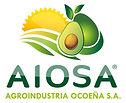 AIOSA_logo_LR2.jpg