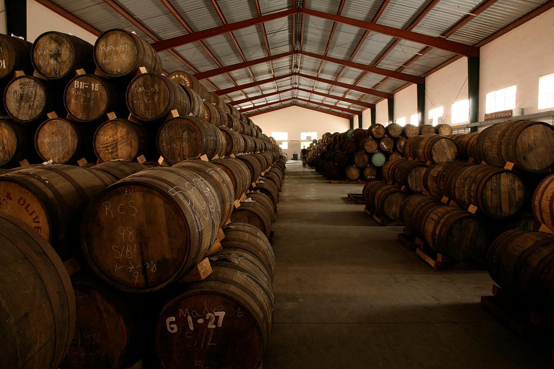 Rum maturation