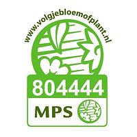 Vignet MPS-ABC NL-804444.jpg