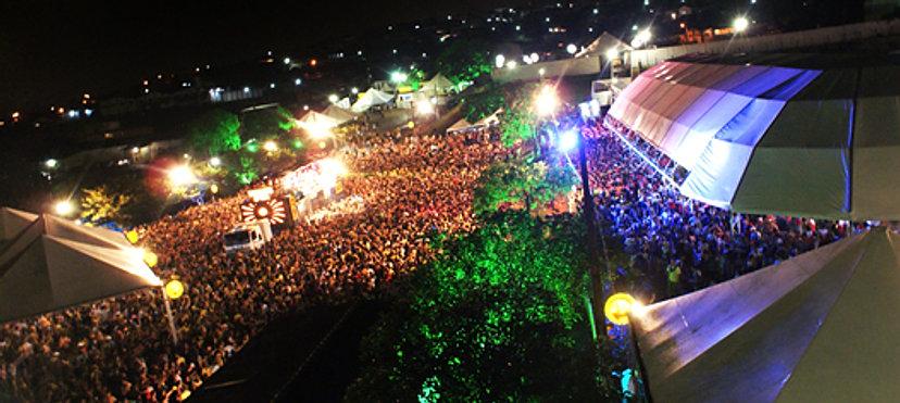 aluguel muzambinho, site carnaval muzambinho,  aluguel de casas em muzambinho, carnaval em muzambinho, abádas do bloco Vermes e Cia 2014