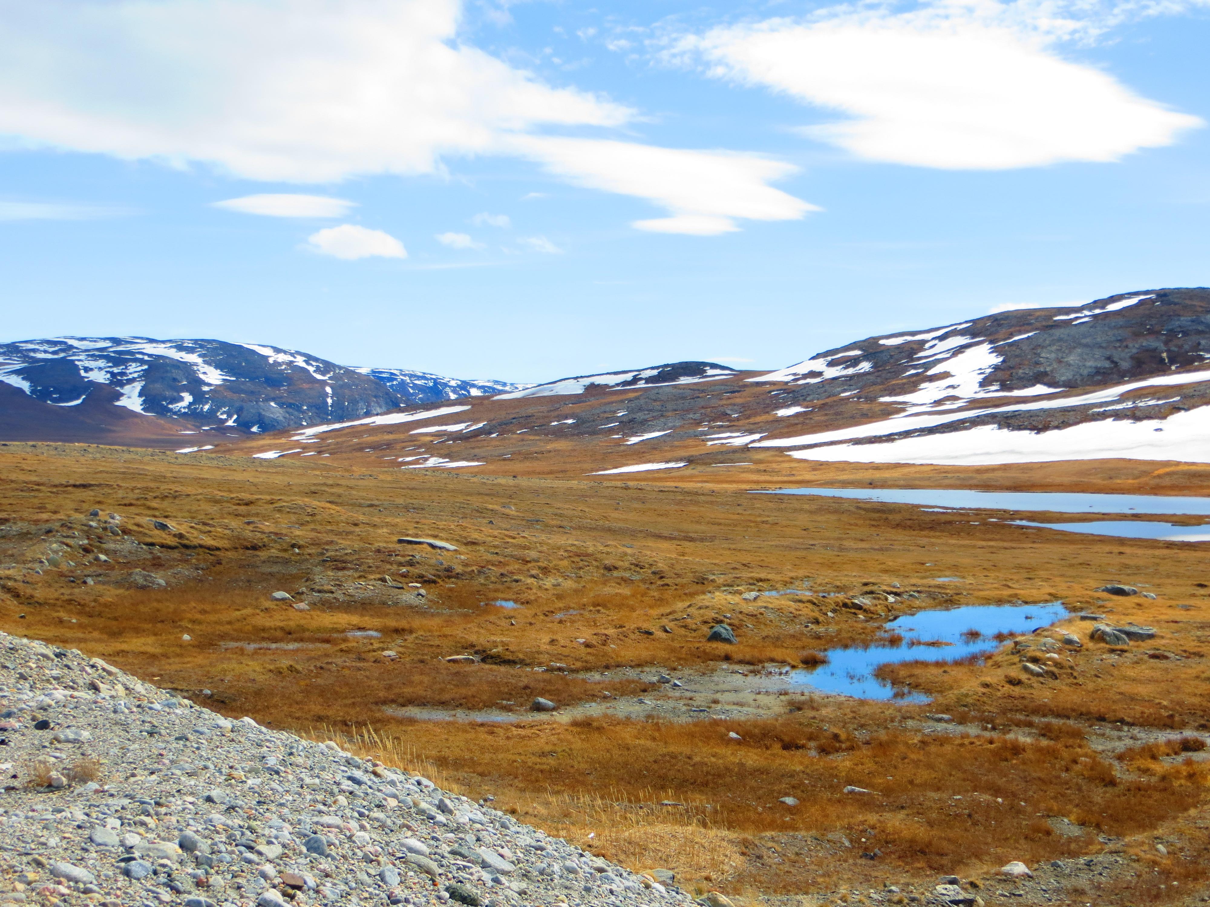 Paysage du grand nord qu b cois le bio coblogue for Agence paysage nord