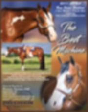 The-Best-Machine-stallion.jpg