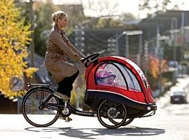 Kangaroo Bicycle Kids Transporter