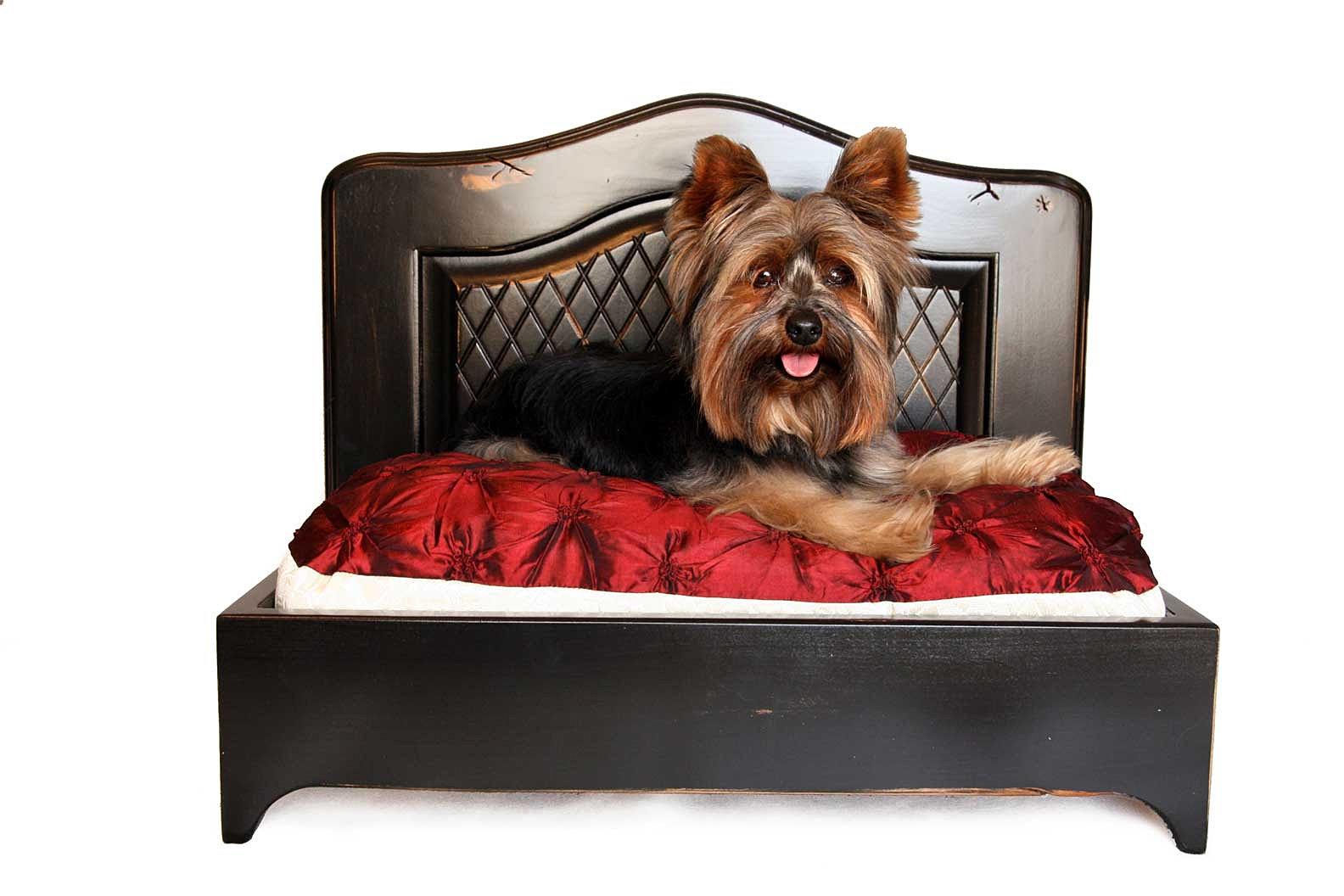 Designer Dog Beds Online