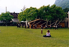 Alphorn group