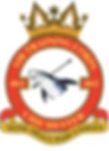 461 badge.jpg