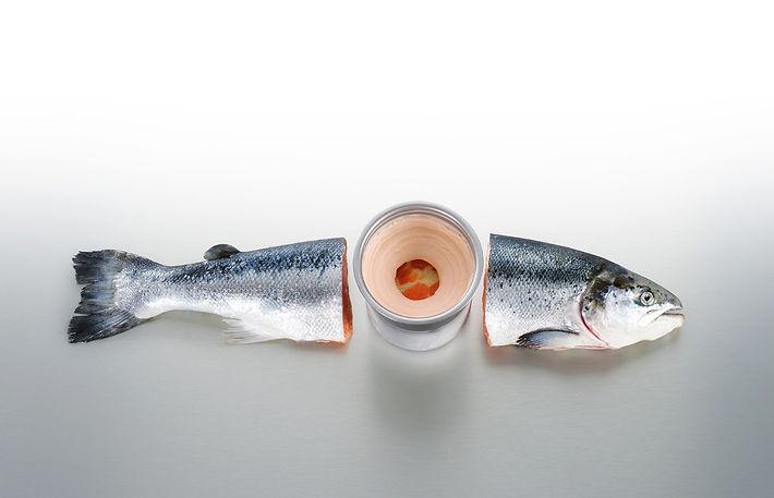 salmon-la-diferencia.jpg