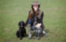 Gundog Training Northumberland