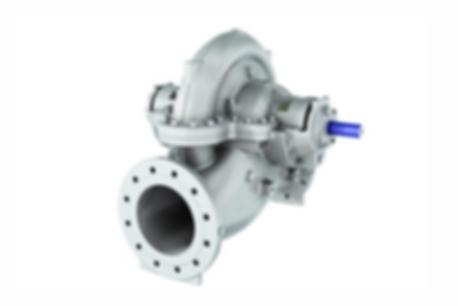 BB1 - Double Suction Axially Split Sludge Pump