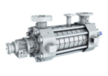 BB4 - High Pressure Ring Section Pump
