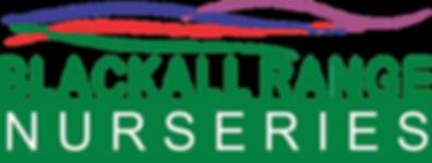 BRN Logo V4.png