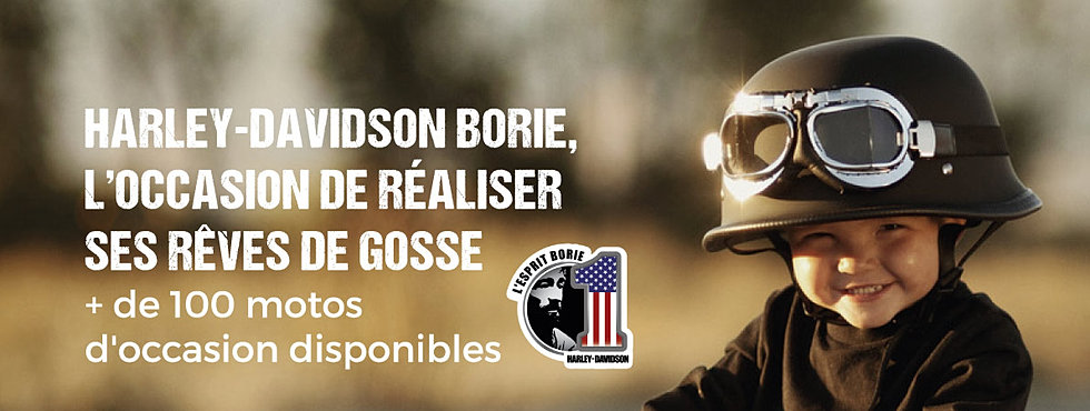 Harley Davidson Borie