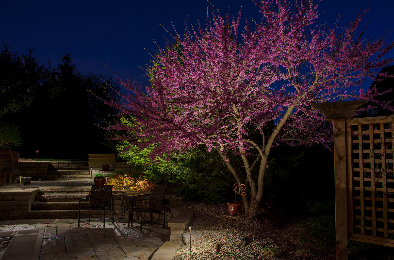 indianapolis landscape lighting professionals tree lighting
