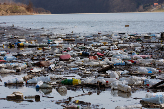 20 Facts About Ocean Pollution | ncw-magazine