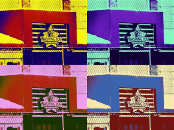 Washington Awning Collage