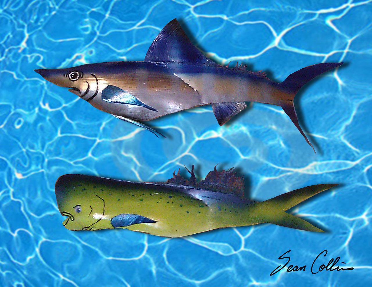 BillFish.jpg
