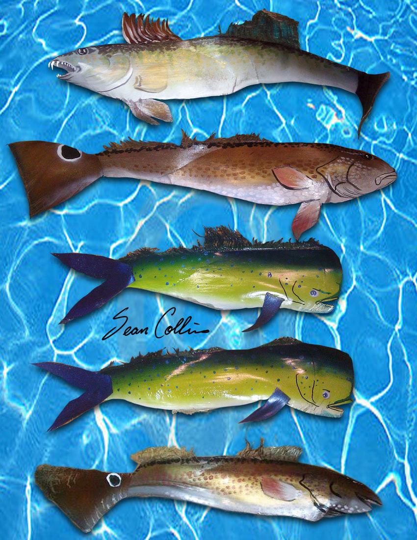 PalmFish.jpg