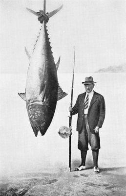 Lorenzo Mitchell-Henry Tunny Fish