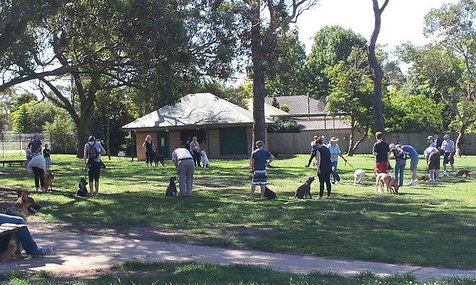 Hornsby Dog Training