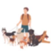 강아지진료.jpg