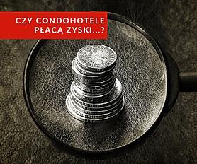 raport_zyski condo 2020.png