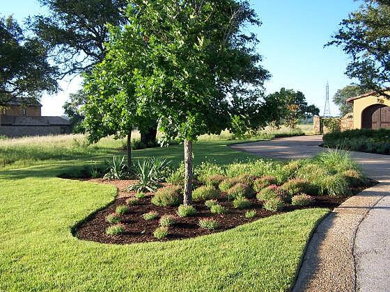 Jxc Landscaping Austin Tx Landscape Professionals