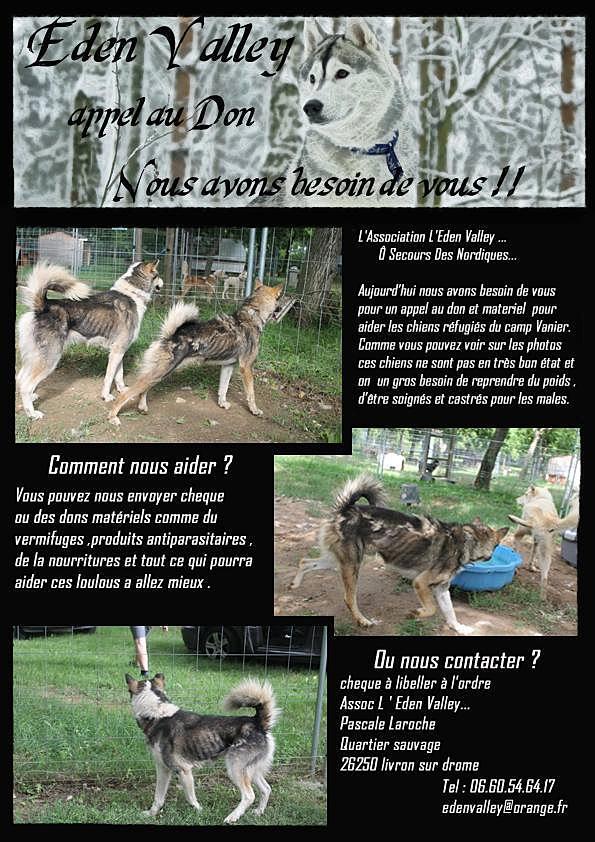 Mobilisation autour des chiens du camp Vanier dans Non classé