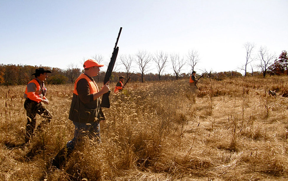 Ozark Wings Hunting Preserve | Quail and Pheasant Hunting ...