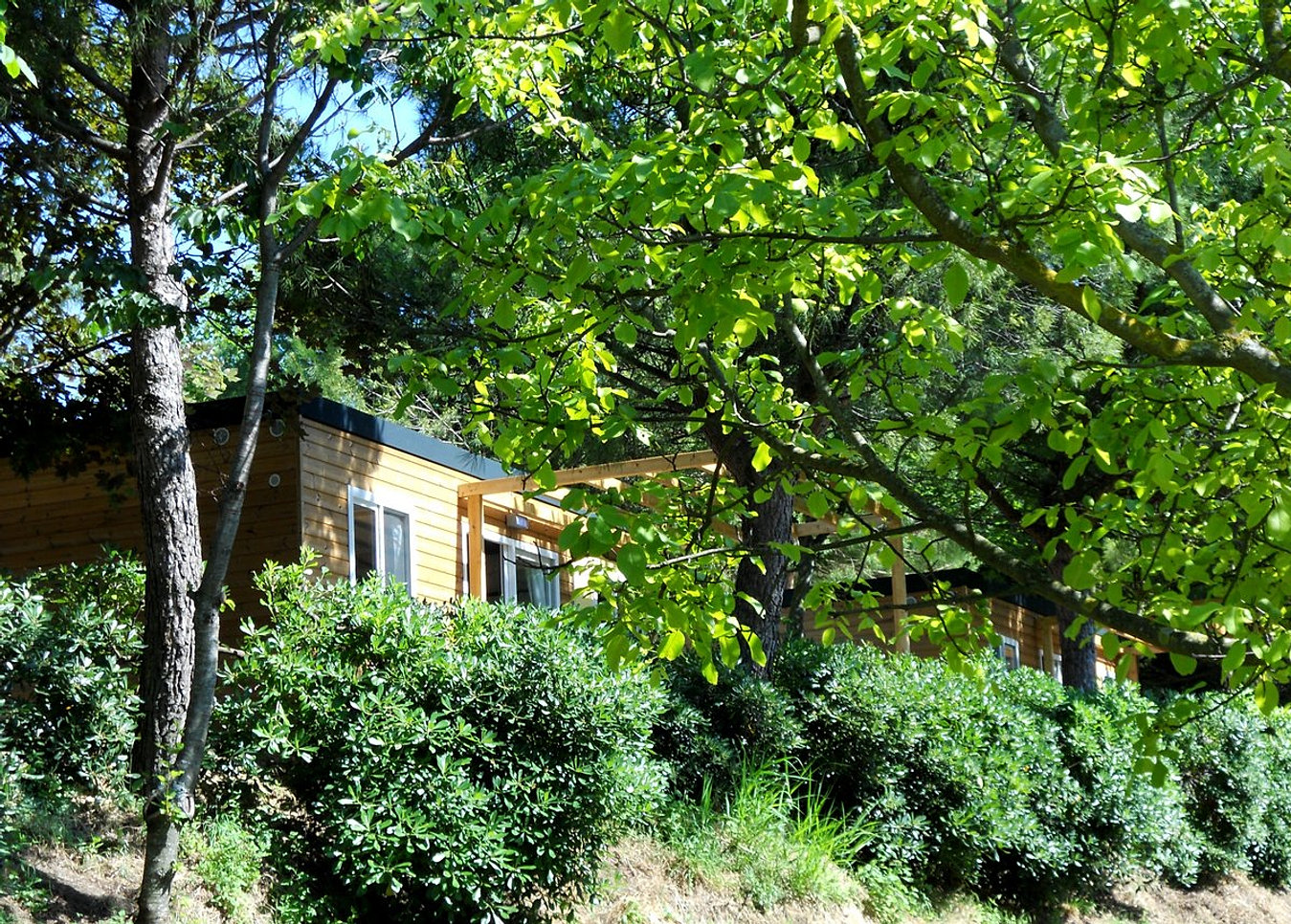 Home pesaro camping paradiso cottage for Planimetrie di piccoli cottage