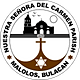 Parish of Barasoain Logo
