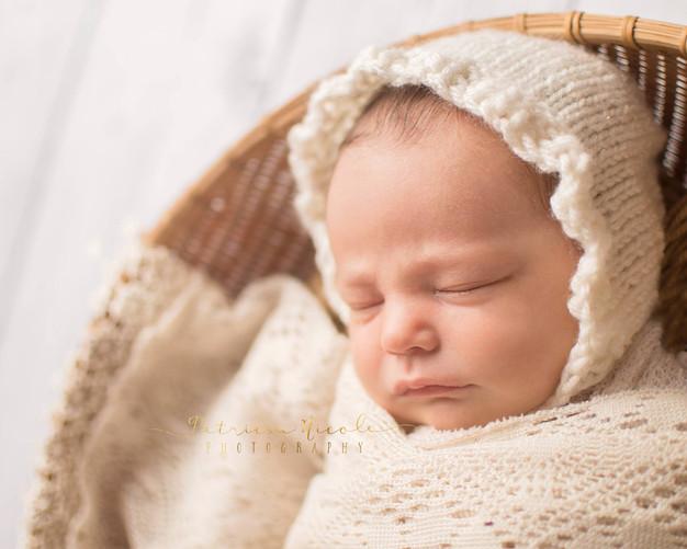 Baby penelope kitsap county newborn photographer