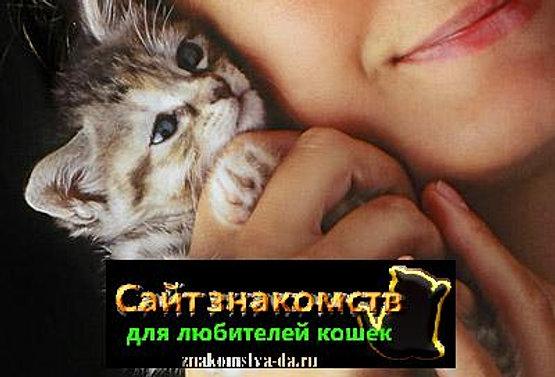Сайт Знакомств Для Любителей Кошек